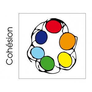 Bouteille Cohésion